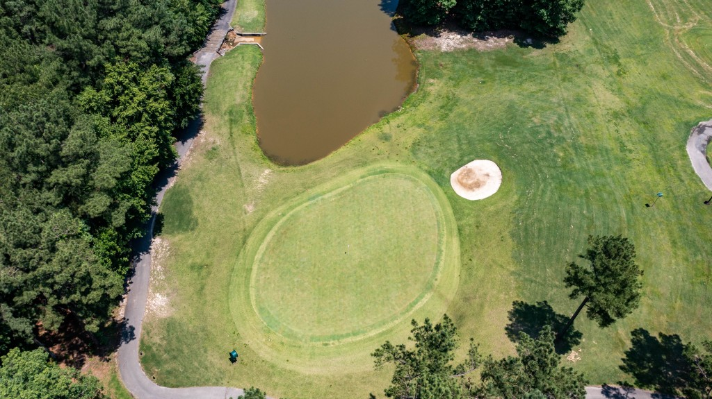 Green from overhead